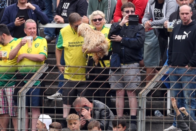 German Tour – Part One: The Bowles family embark on #NCFC road trip number 2