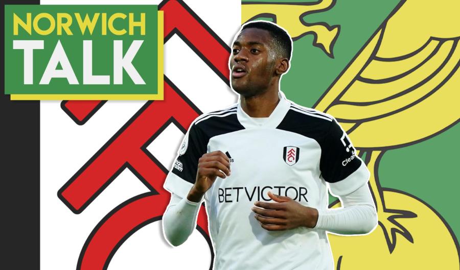 VIDEO: Norwich City 'Linked' With Tosin Adarabioyo   Norwich Talk